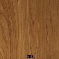 203 web